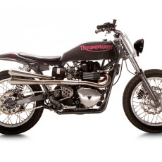 """Triumphant"" Bonneville Tracker by British Customs"