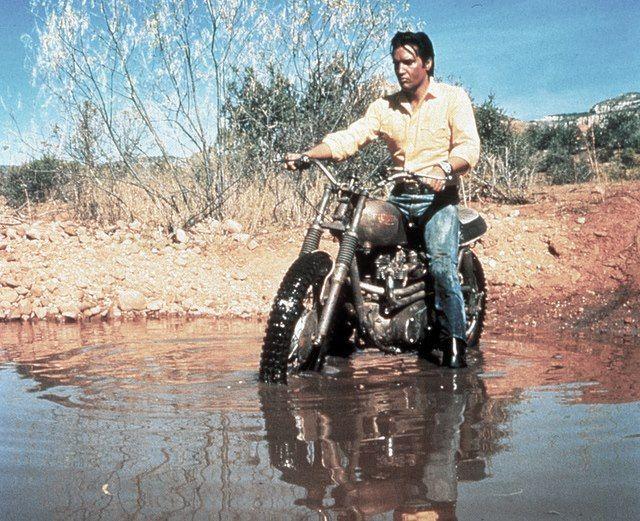 Elvis Desert Sled