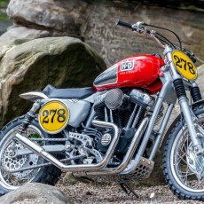 Harley XL1200 Scrambler by Shaw Speed & Custom