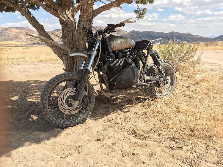 Triumph-Scrambler-Desert-Sled-5