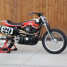 Sportster Hooligan Tracker by BCKustoms