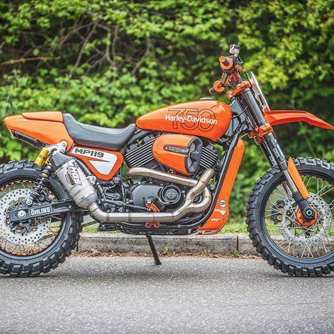 Harley Street Rod 750 Dirt Bike
