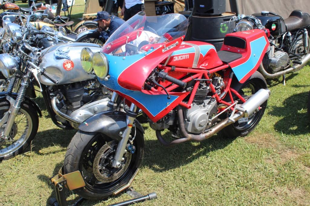 Ducati Endurance Racer
