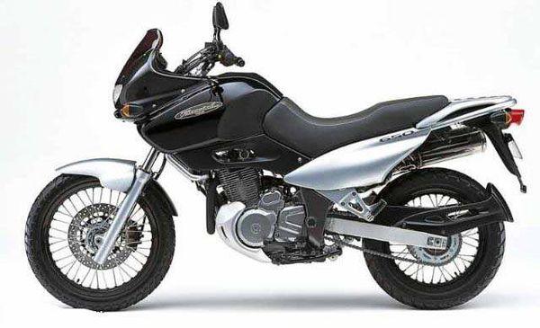 Suzuki XF650 Scrambler