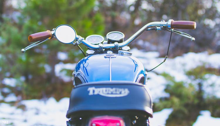 Triumph-TR6-Desert-Sled-5