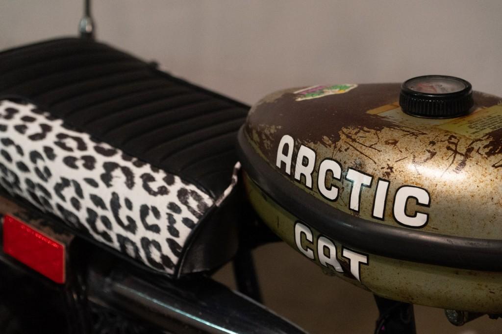 Arctic Cat Prowler MiniBike