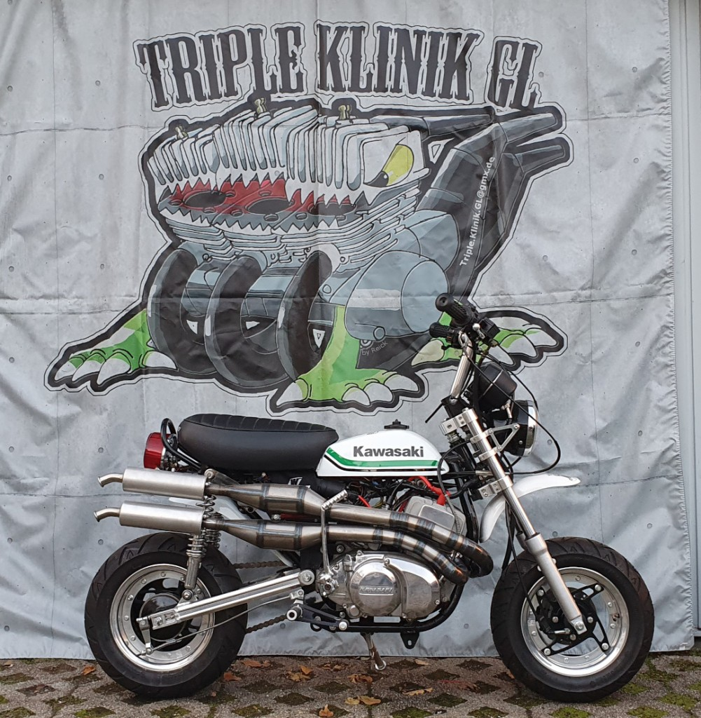 Kawasaki KV250 Minibike