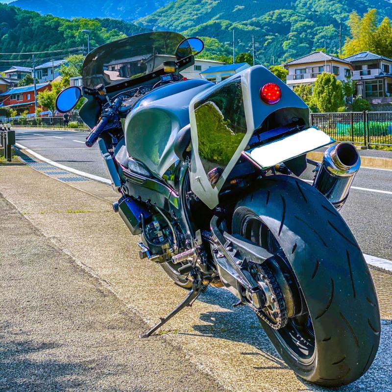 Suzuki Hayabusa Endurance Racer